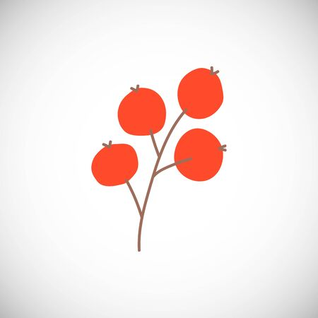 Isolated branch winter viburnum. Simple red berries in scandinavian style.