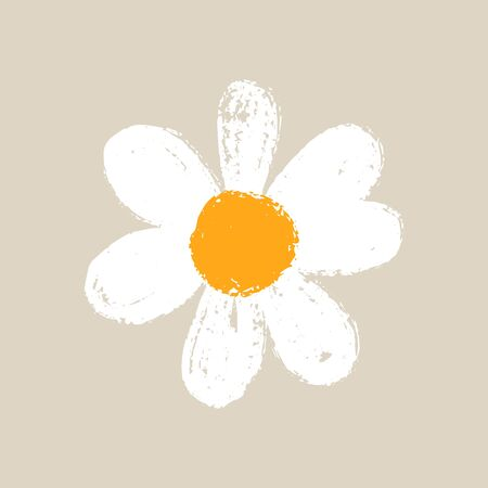 Isolated cute daisy flower. Hand draw chamomile head. Yellow white floral marquerite in simple flat style. Vector printable Illustration