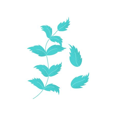 Set of isolated leaves of chickpea in vector. Green leaf in modern flat style. Background illustration