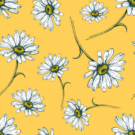 Seamless minimal botanical pattern with daisies. Printable hand draw background for textile pillow, shirt, toy, card. Vector Illustration