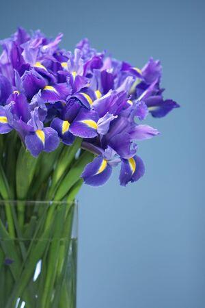 Purple Iris Bouquet Reklamní fotografie