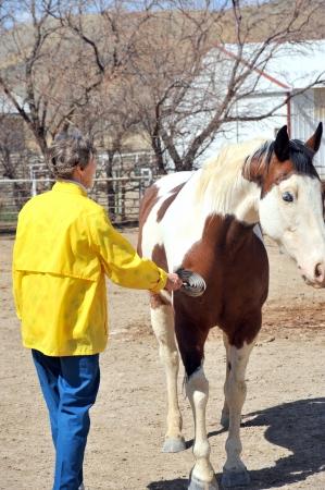 rancher: Mature female rancher brushing her horse  Stock Photo