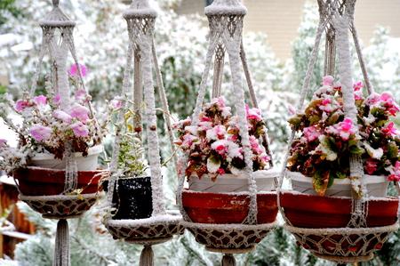 patio deck: Inverno neve sul patio ponte esterno.