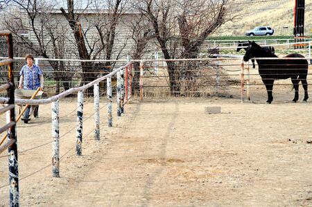 rancher: Female rancher cleaning horse poop in the stable. Stock Photo