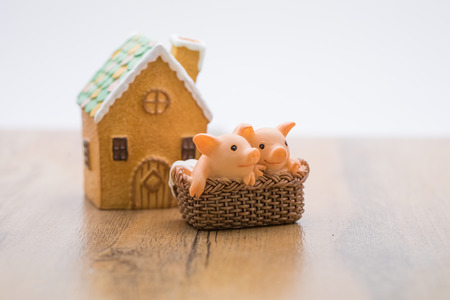 Two piglets in a basket Stock Photo