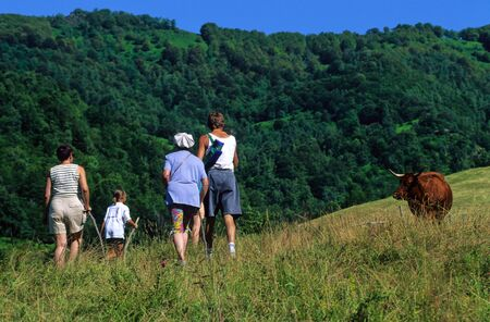 Family walking in nature photo