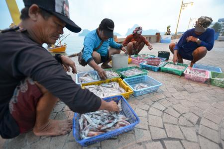khan: Prachuap Khiri Khan, Thailand, Fishermen unloading squid on the beach on March 22, 2014 in Prachuap Khiri Khan, Thailand Editorial