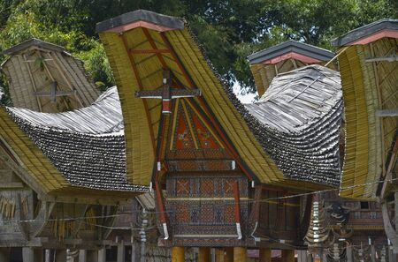 toraja: Tongkonan traditional houses in Tana Toraja, Sulawesi, Indonesia