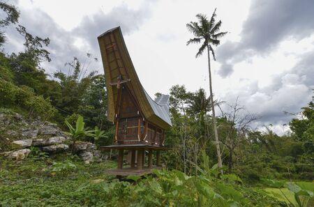 sulawesi: Tongkonan traditional houses in Tana Toraja, Sulawesi, Indonesia