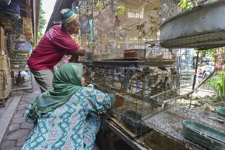 6 people: Yogyakarta, Java, Indonesia - August 6: People selling birds at the Pasar Ngasem Market on August 6, 2016 in Yogyakarta, Java, Indonesia