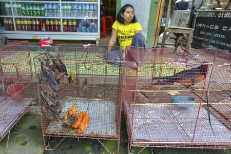 6 people: Yogyakarta, Java, Indonesia - August 6: People selling birds at the Pasar Ngasem Market on August 6, 2016 in Yogyakarta, Java, Indonesia.