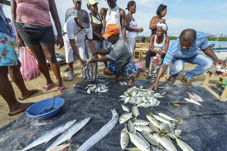 Cartagena, Colombia - August 4: Fishermen selling fish on the beach of Cartagena on August 4, 2017 in Cartagena, Colombia.
