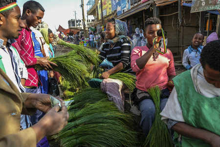 Bahir Dar, Amhara Region, Ethiopia - January 20: Freshly cut grass which used for decorating floors during the holidays available for sale in the market on January 20, 2018 in Bahir Dar, Ethiopia. Editorial