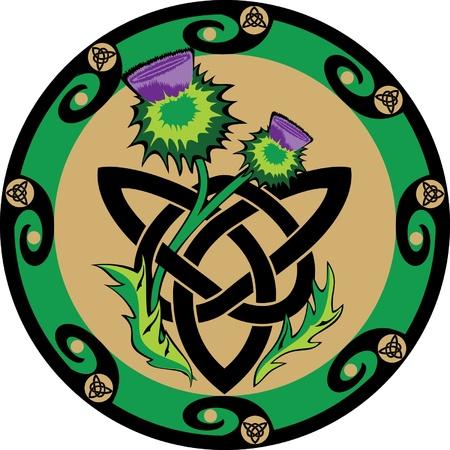ostrożeń: Thistle kwiaty z symbolami celtyckimi