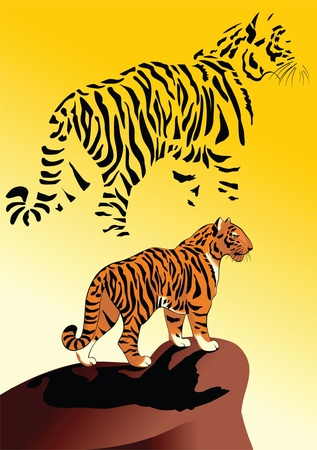 Tiger, watching from a high cliff Illustration