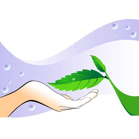 dewdrops: hand with a green leaf Illustration