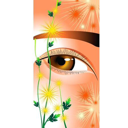 Eyes like a flower chrysanthemums Stock Vector - 10624528