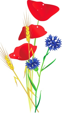 a bouquet of wildflowers Vector