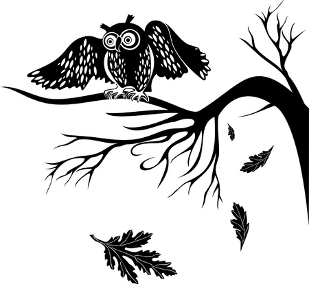 night bird: silhouette owl on a tree branch on the isolated background