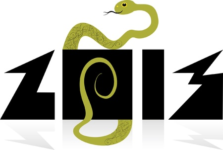 images of a snake - a symbol of 2013 on the Chinese calendar on an isolated background Vector