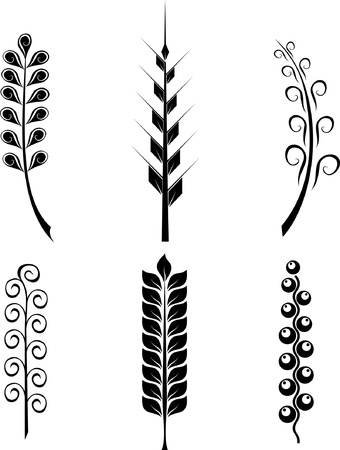 thorns  sharp: vector set of plant elements spikes isolated Illustration