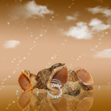 card with a group of sea shells and pearls on the background of clouds photo