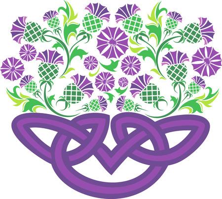 imagen del vector nudo celta en forma de una cesta con flores de cardo