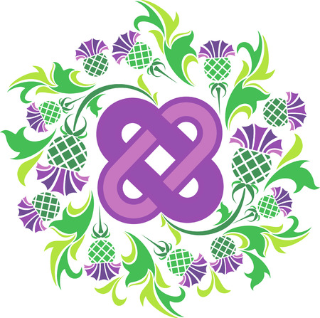 vector image Celtic knot surrounded by flowers thistle