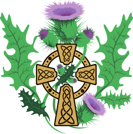 thistle: vector image stylized Celtic cross framed thistle flowers