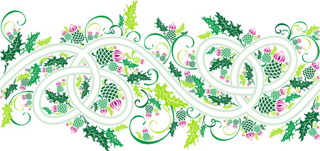 thistle: beautiful border with celtic ornament and flowers thistle