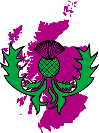 vector image flower of the thistle on a background map of Scotland