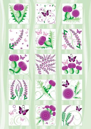schöne Reihe von dekorativen Scottish Blumen Distel und Heidekraut