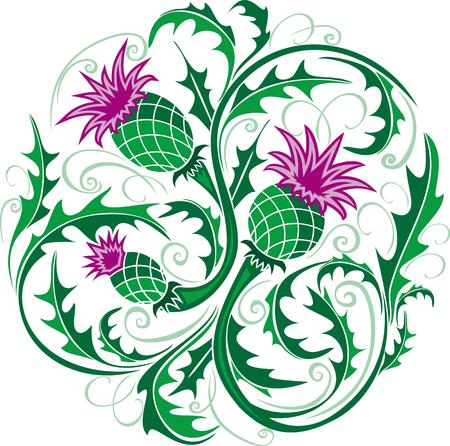 belle vignette ronde de style celtique avec des fleurs de chardon