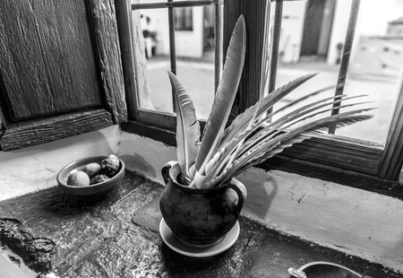 Several feathers inside a vase, next to a window of an old house