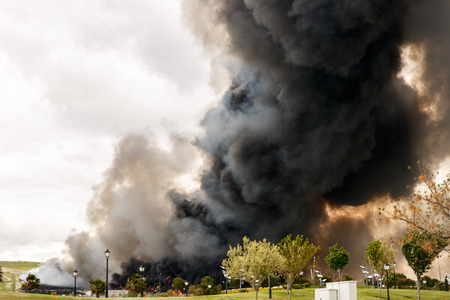 Huge and devastating fire near a park