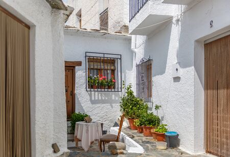hick: View of the outside entrance of a nice typical house in the south of Spain
