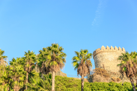 Beautiful view of tropical palm trees with a medieval tower in the background, Spain