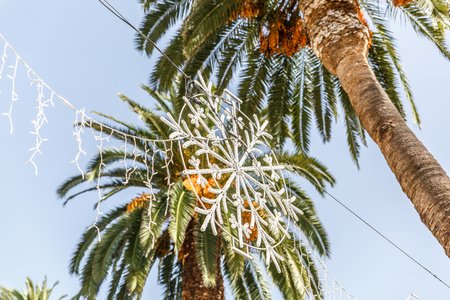 Great Christmas street ornament with palm trees in the background
