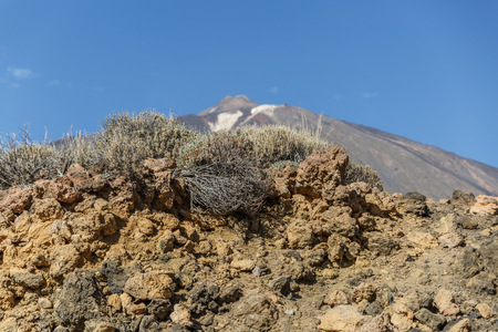 Set of volcanic stones in the natural park of Teide, Canary Islands, Spain Stock Photo
