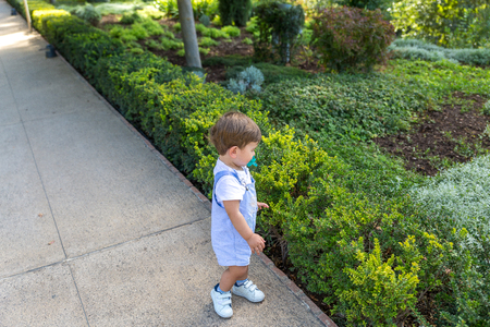A cute little boy with a pacifier in his mouth, plays placidly in a garden