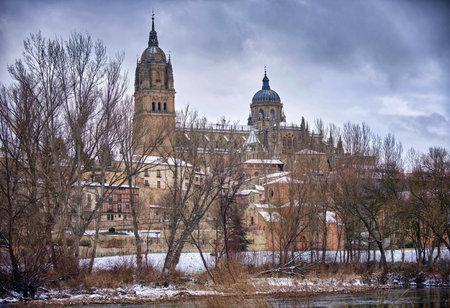 Salamanca cathedral, after the storm Filomena Banque d'images