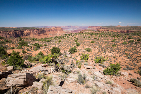 overlook: Anticline overlook, Canyonlands National Park, Utah