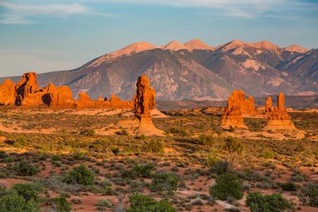petrified: Petrified Dunes the Arches National Park, Utah, USA