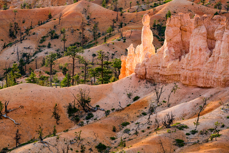 state of mood: Sunrise Bryce Canyon National Park, Utah