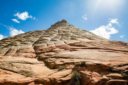 checkerboard: Checkerboard Mesa in Zion National Park, Utah