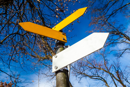 decision tree: Yellow and white decision signs on a tree Stock Photo