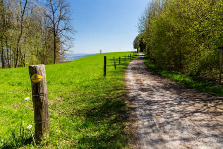 aargau: Hiking trail on Mountain Heitersberg, Aargau, Switzerland Stock Photo