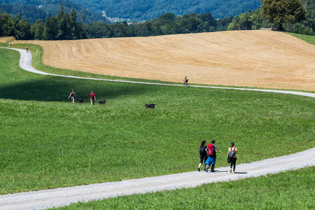mountainbiking: People walking near green meadow and yellow field