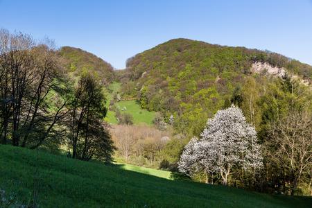 aargau: The Mountain Wasserflueh in caton of  Aargau, Switzerland