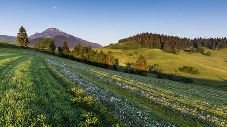 choc: View of the mountain Choc at sunrise near Dolny Kubin, Slovakia in summer 2015